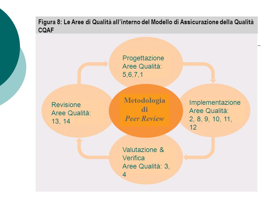 Metodologia di Peer Review