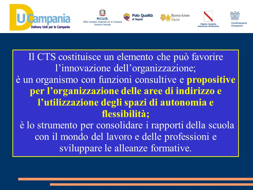 Il CTS costituisce un elemento che può favorire l'innovazione dell'organizzazione;
