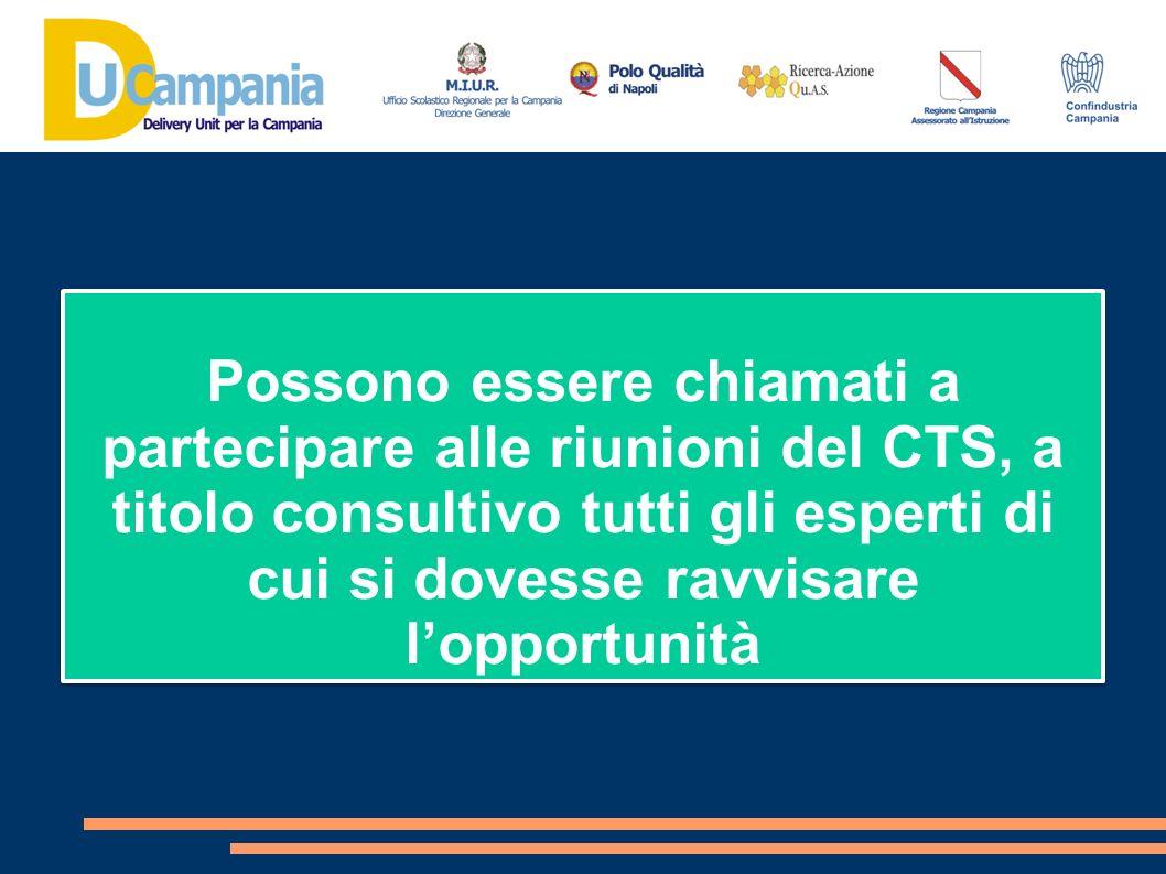Possono essere chiamati a partecipare alle riunioni del CTS, a titolo consultivo tutti gli esperti di cui si dovesse ravvisare l'opportunità