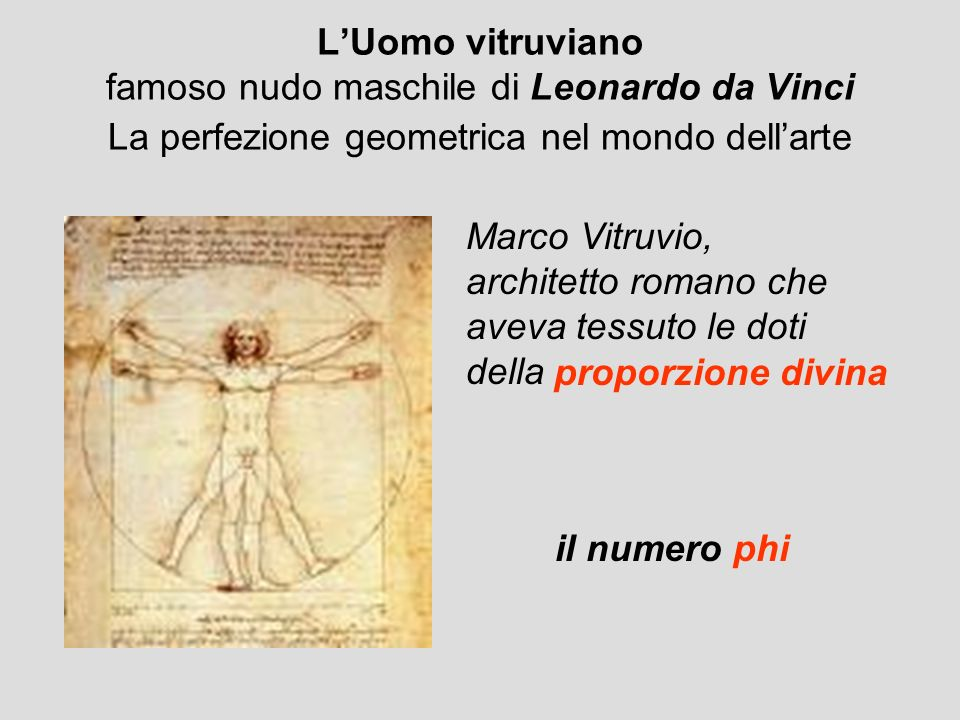 L'Uomo vitruviano famoso nudo maschile di Leonardo da Vinci La perfezione geometrica nel mondo dell'arte