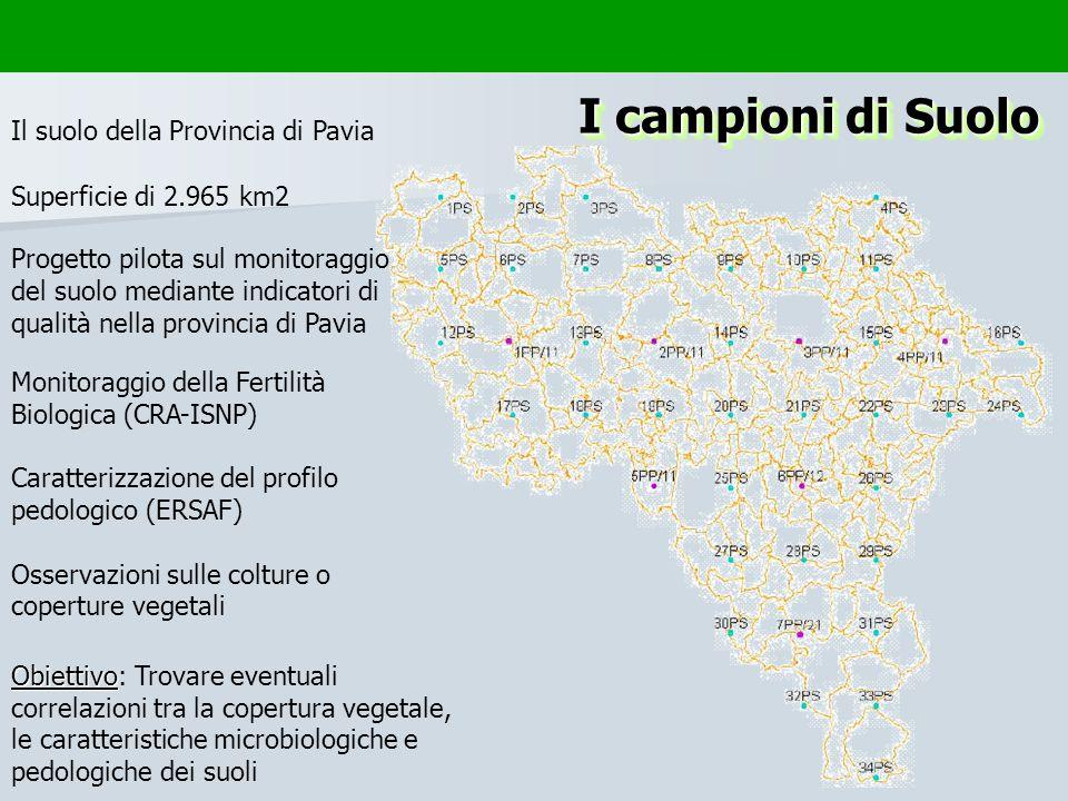 I campioni di Suolo Il suolo della Provincia di Pavia