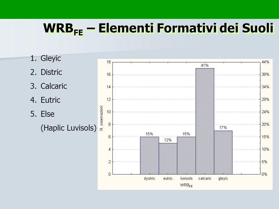 WRBFE – Elementi Formativi dei Suoli