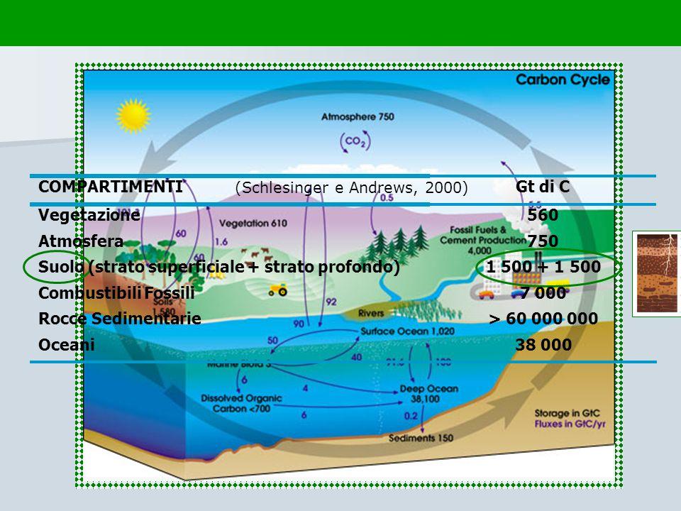 Suolo (strato superficiale + strato profondo) 1 500 + 1 500