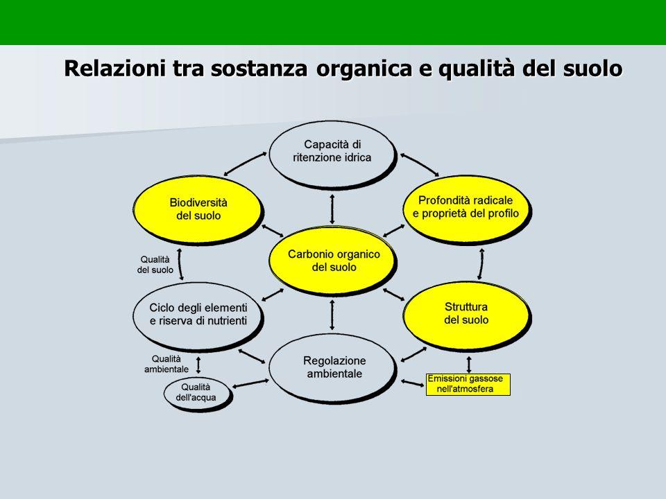 Relazioni tra sostanza organica e qualità del suolo