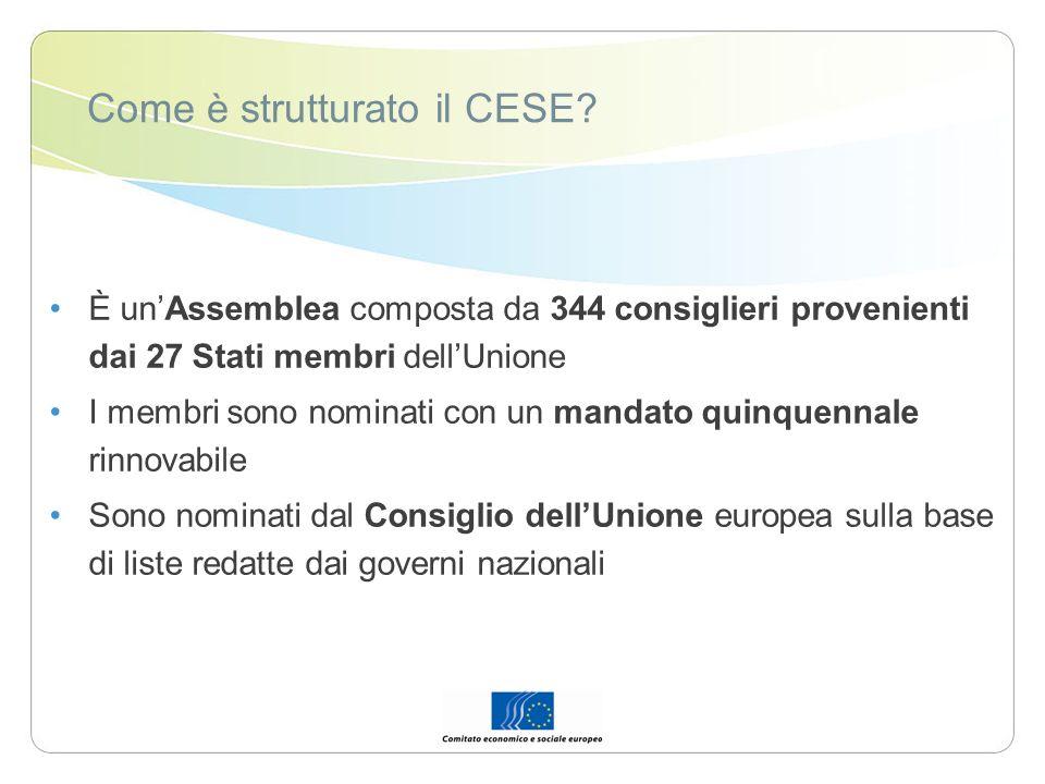 Come è strutturato il CESE
