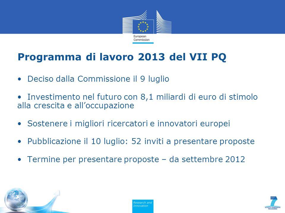 Programma di lavoro 2013 del VII PQ