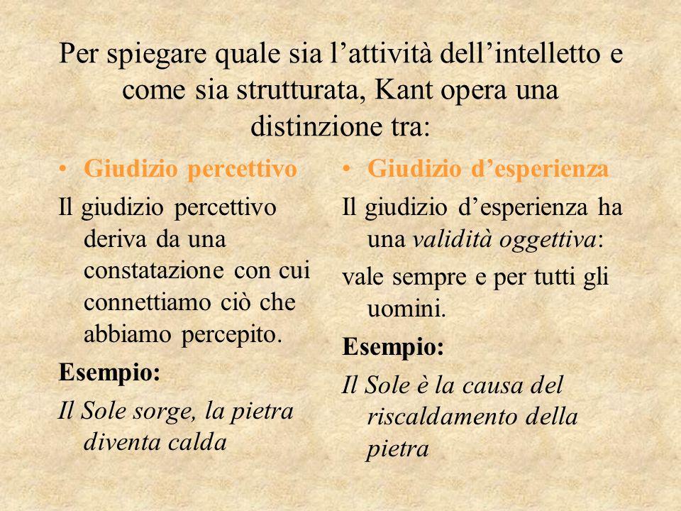 Per spiegare quale sia l'attività dell'intelletto e come sia strutturata, Kant opera una distinzione tra:
