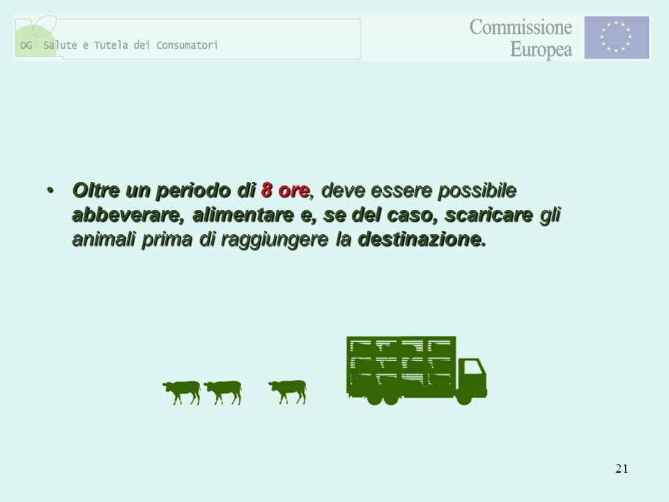 Oltre un periodo di 8 ore, deve essere possibile abbeverare, alimentare e, se del caso, scaricare gli animali prima di raggiungere la destinazione.