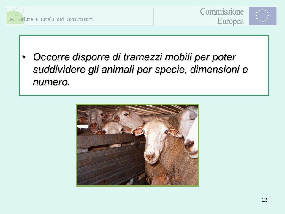 Occorre disporre di tramezzi mobili per poter suddividere gli animali per specie, dimensioni e numero.