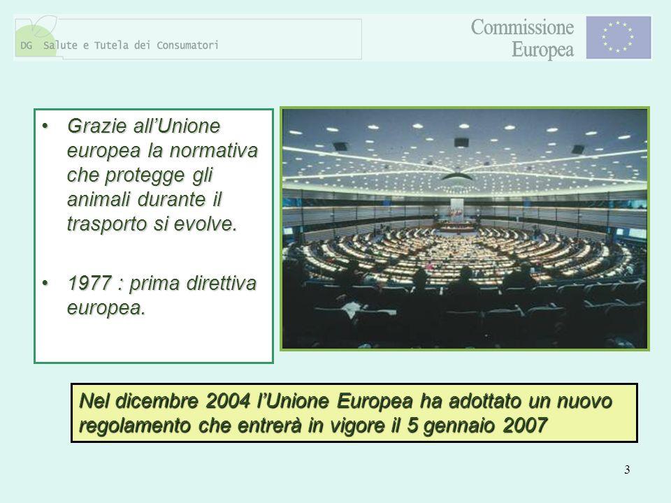 Grazie all'Unione europea la normativa che protegge gli animali durante il trasporto si evolve.