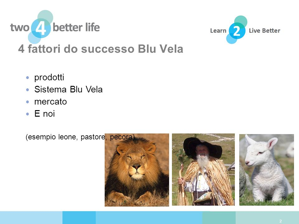 4 fattori do successo Blu Vela