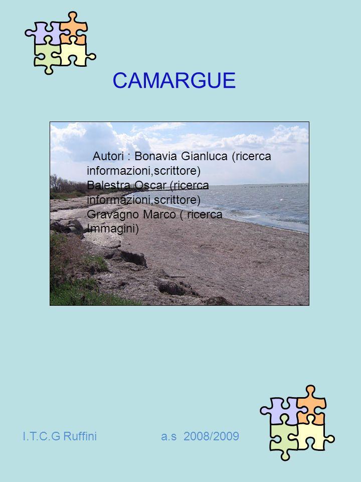 CAMARGUE Autori : Bonavia Gianluca (ricerca informazioni,scrittore)