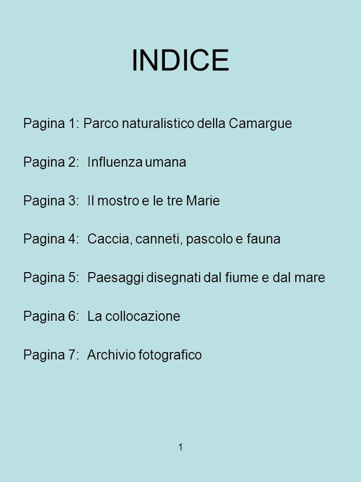 INDICE Pagina 1: Parco naturalistico della Camargue