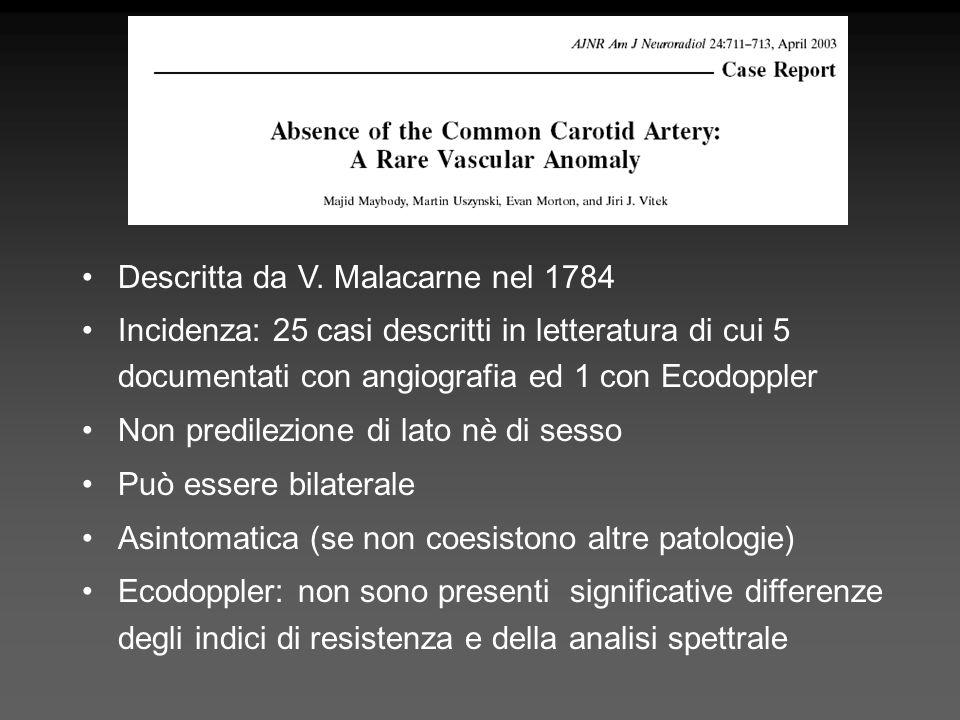 Descritta da V. Malacarne nel 1784
