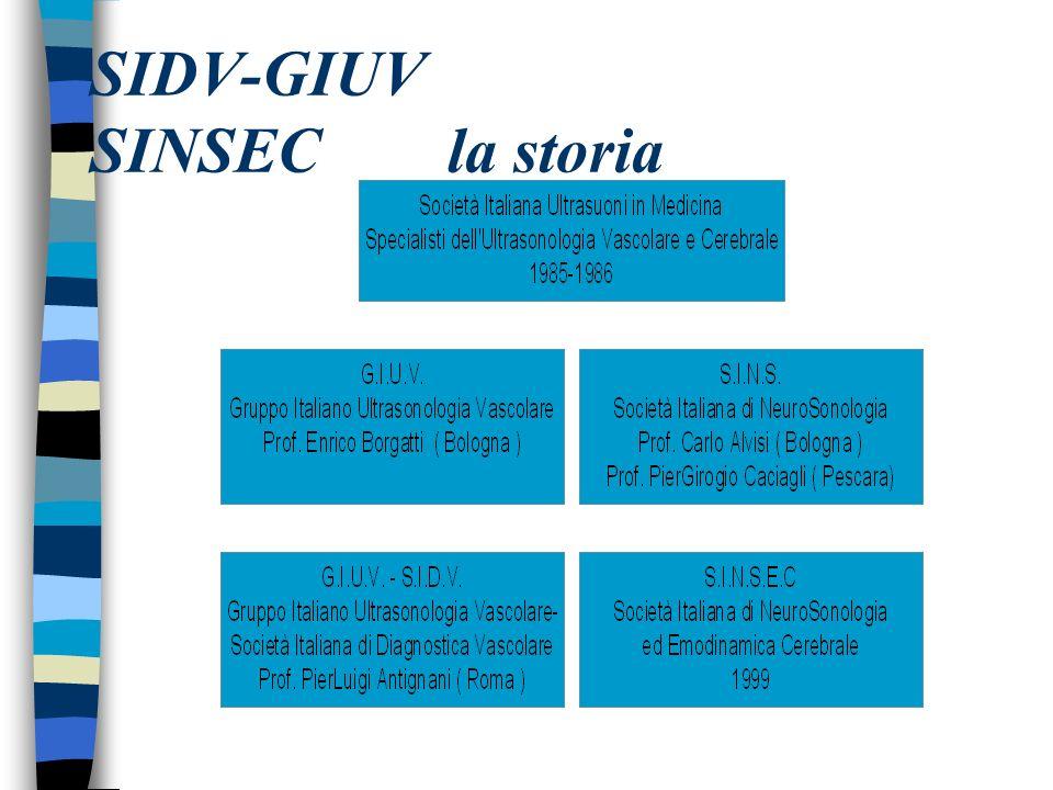 SIDV-GIUV SINSEC la storia