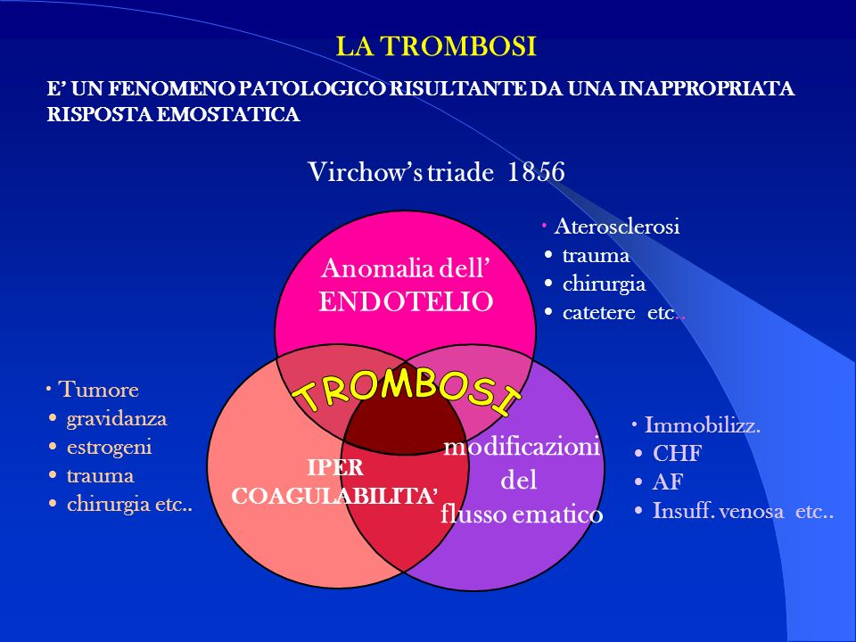 TROMBOSI LA TROMBOSI Virchow's triade 1856 Anomalia dell' ENDOTELIO