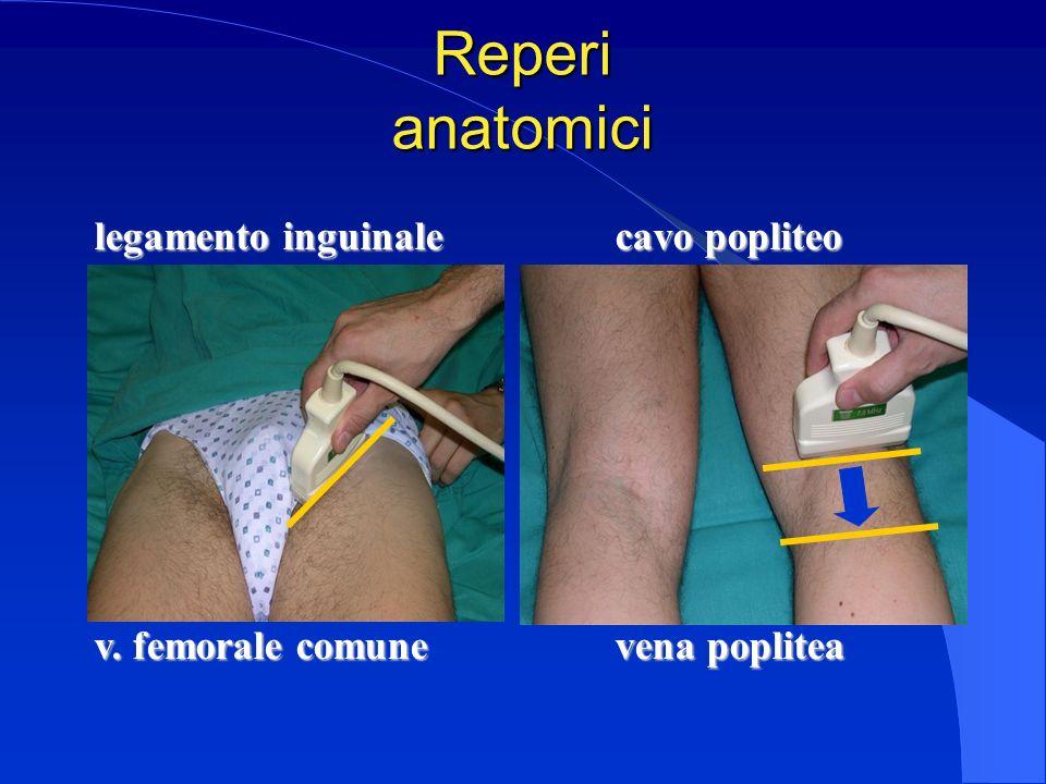 Reperi anatomici legamento inguinale cavo popliteo