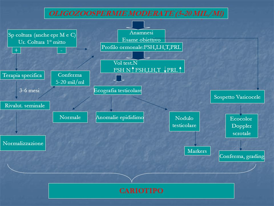 OLIGOZOOSPERMIE MODERATE (5-20 MIL/Ml)