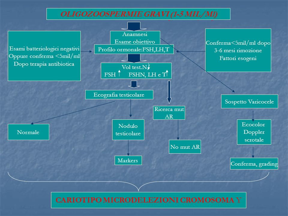 OLIGOZOOSPERMIE GRAVI (1-5 MIL/Ml) OLIGOZOOSPERMIE GRAVI (1-5 MIL/Ml)