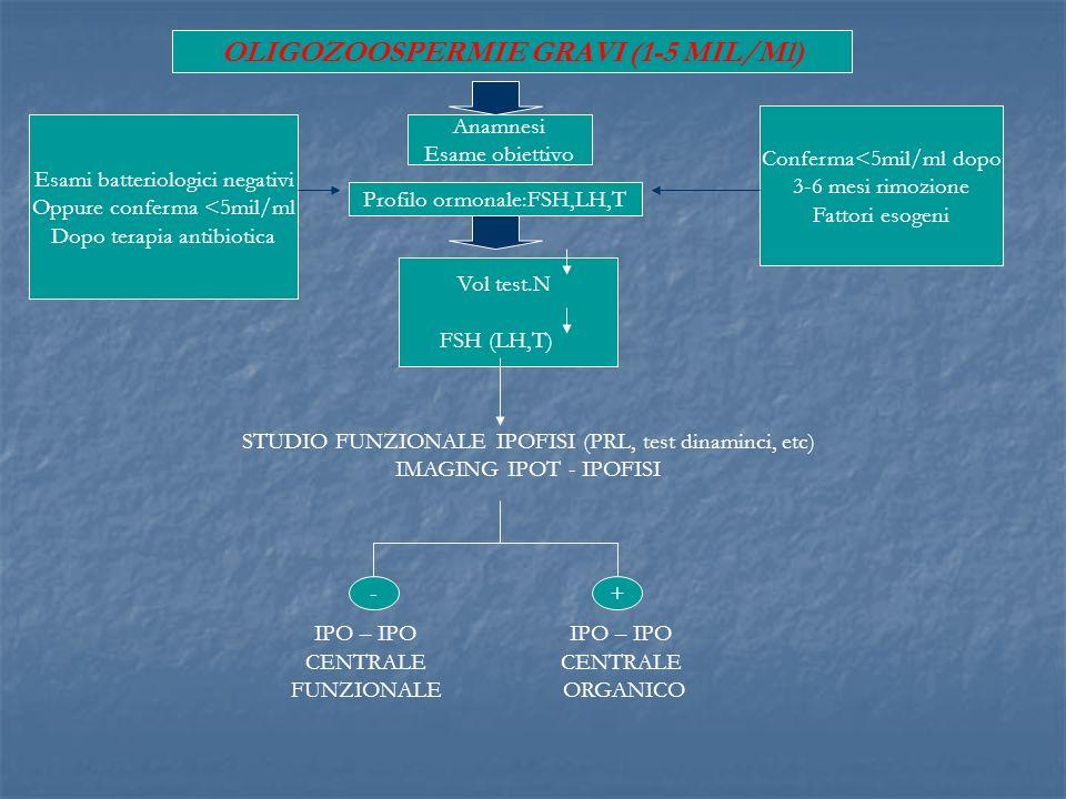 OLIGOZOOSPERMIE GRAVI (1-5 MIL/Ml)