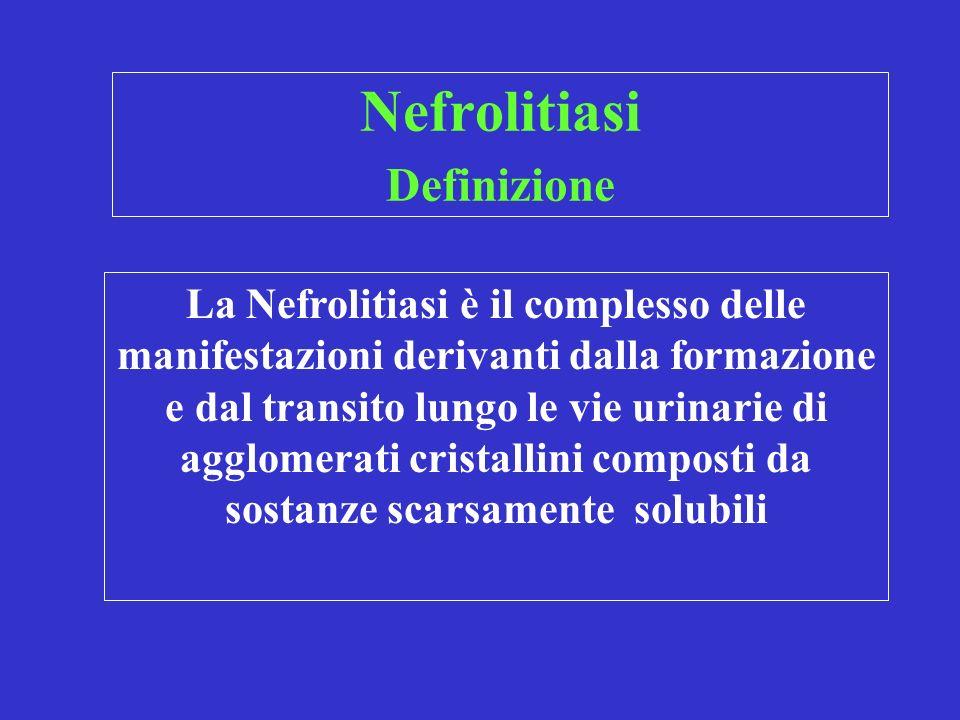 Nefrolitiasi Definizione