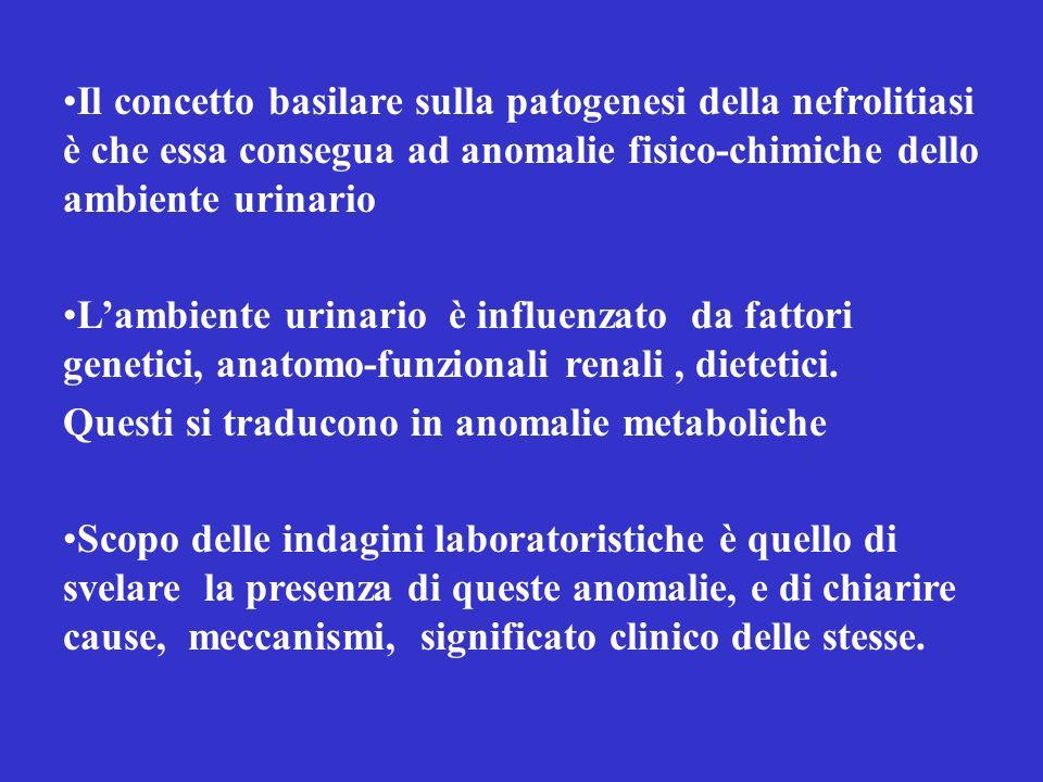 Il concetto basilare sulla patogenesi della nefrolitiasi è che essa consegua ad anomalie fisico-chimiche dello ambiente urinario