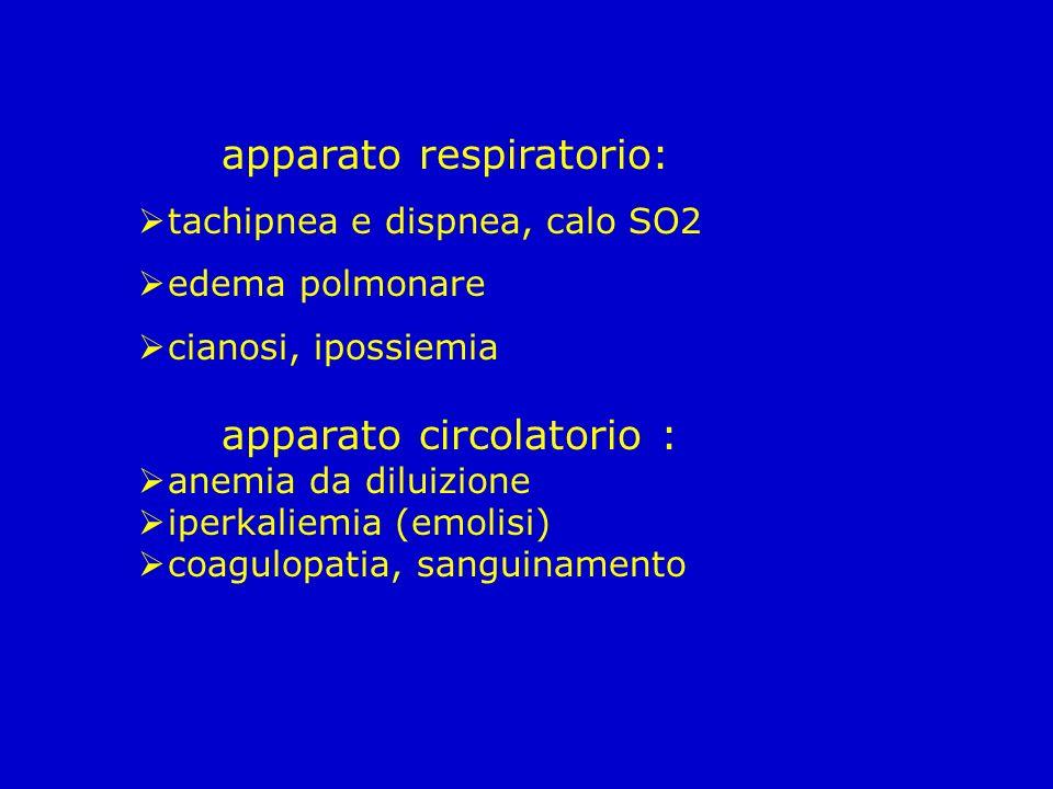apparato respiratorio: