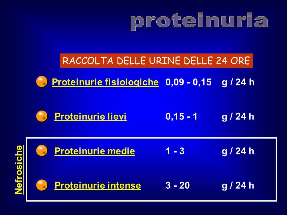 proteinuria RACCOLTA DELLE URINE DELLE 24 ORE Proteinurie fisiologiche