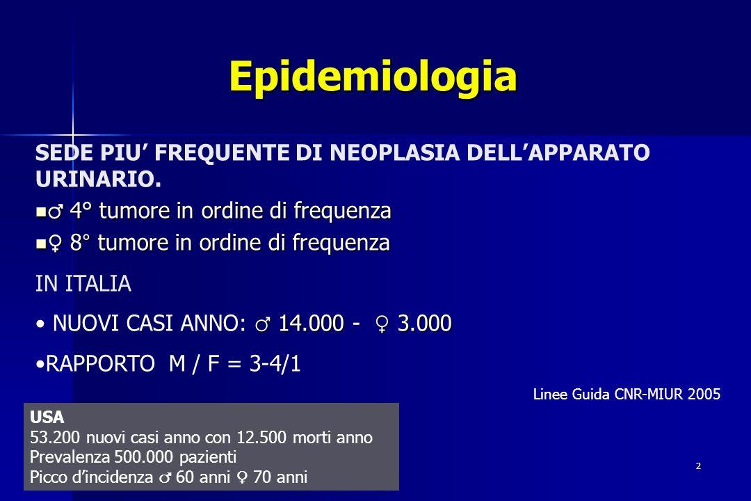 Epidemiologia SEDE PIU' FREQUENTE DI NEOPLASIA DELL'APPARATO URINARIO.
