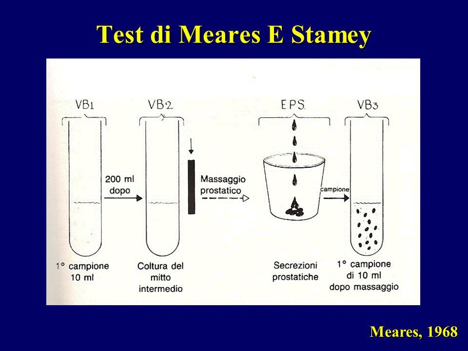 Test di Meares E Stamey Meares, 1968