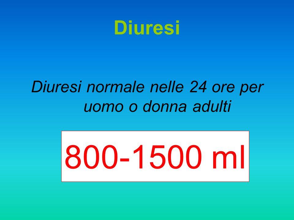Diuresi normale nelle 24 ore per uomo o donna adulti