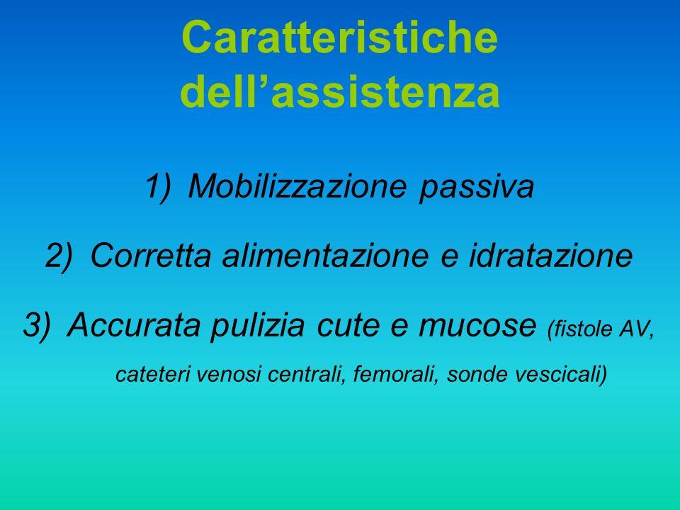 Caratteristiche dell'assistenza