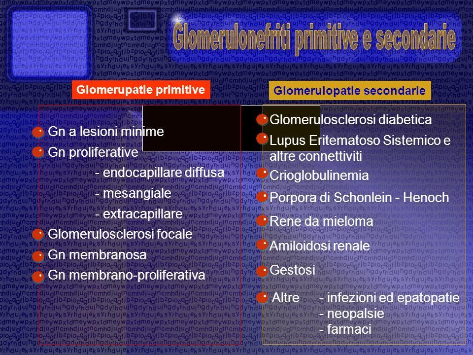 Glomerulonefriti primitive e secondarie