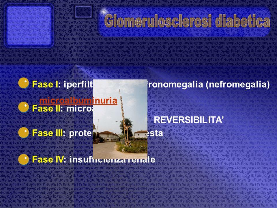 Glomerulosclerosi diabetica