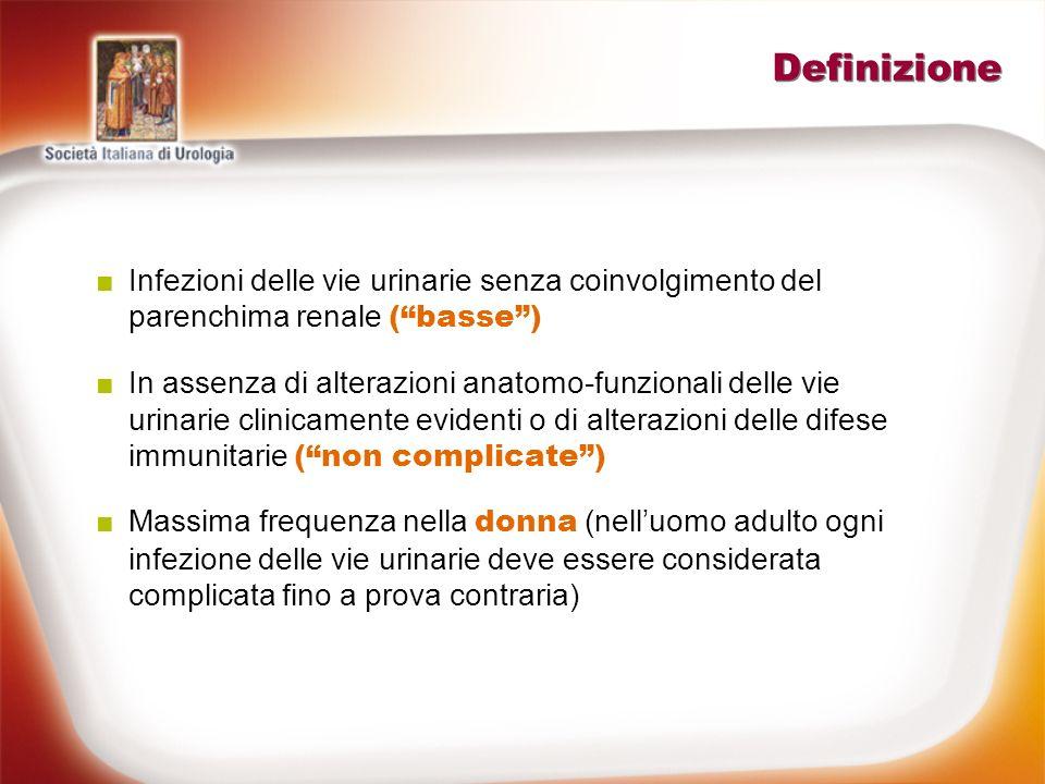 Definizione Infezioni delle vie urinarie senza coinvolgimento del parenchima renale ( basse )