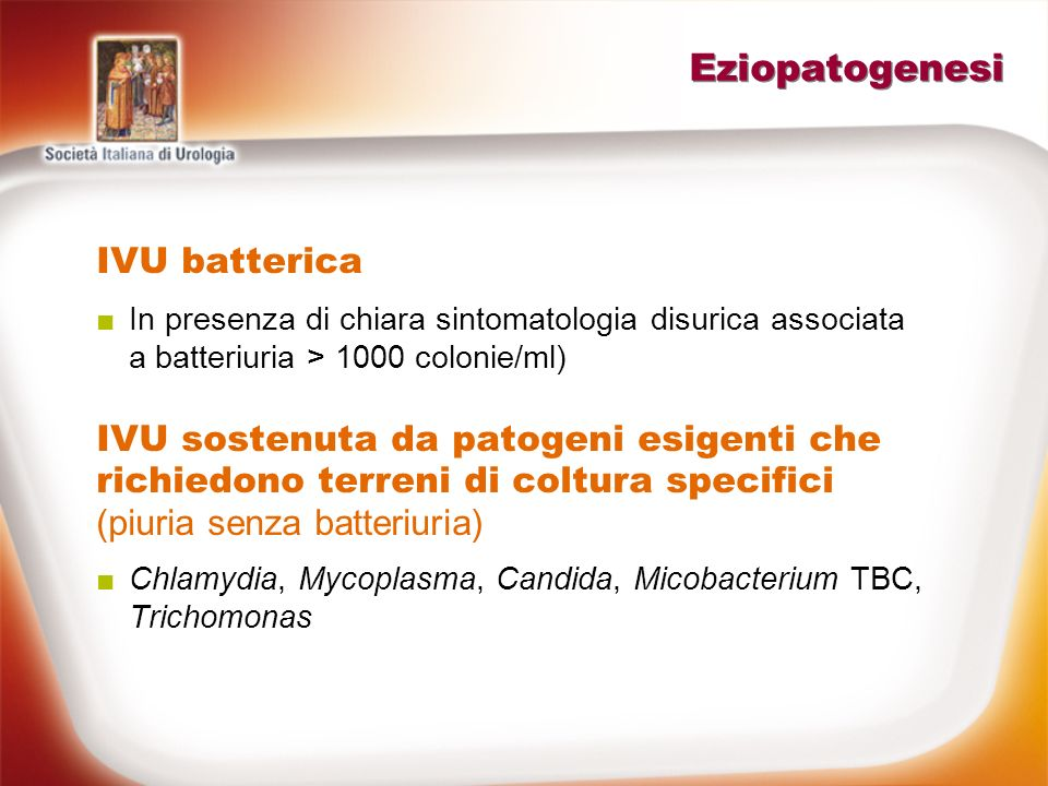 Eziopatogenesi IVU batterica