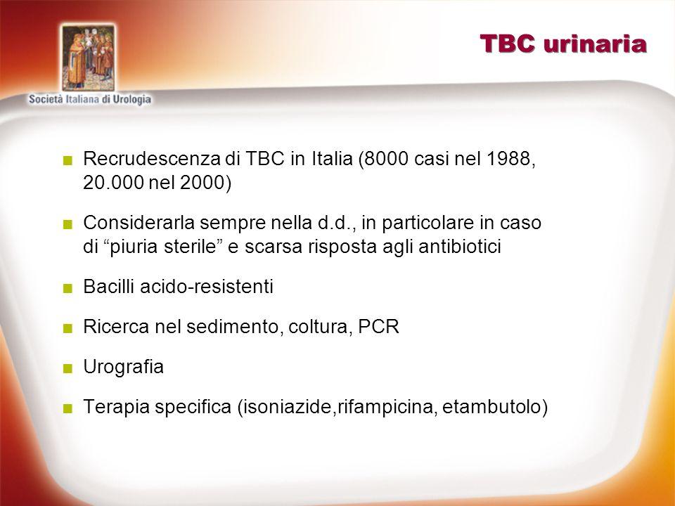 TBC urinaria Recrudescenza di TBC in Italia (8000 casi nel 1988, 20.000 nel 2000)