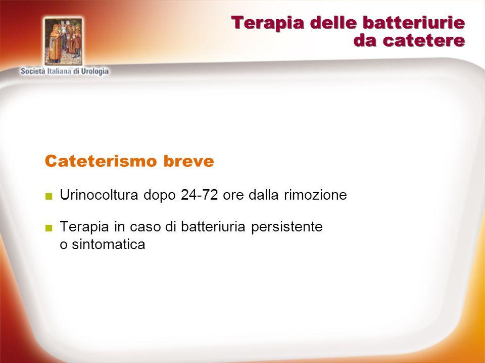 Terapia delle batteriurie da catetere