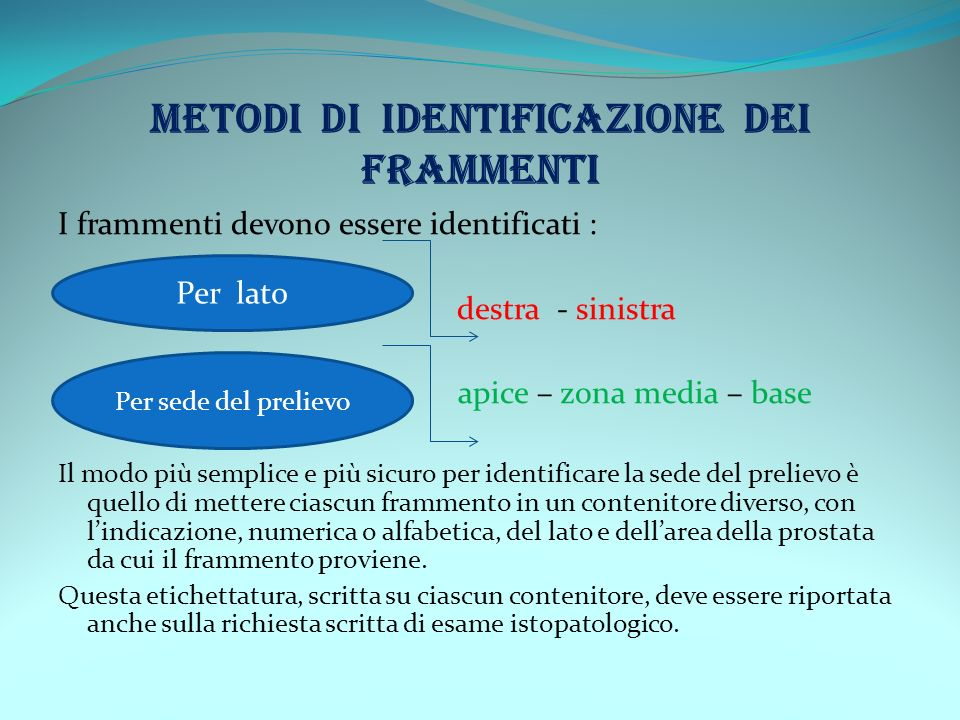 METODI DI IDENTIFICAZIONE DEI FRAMMENTI