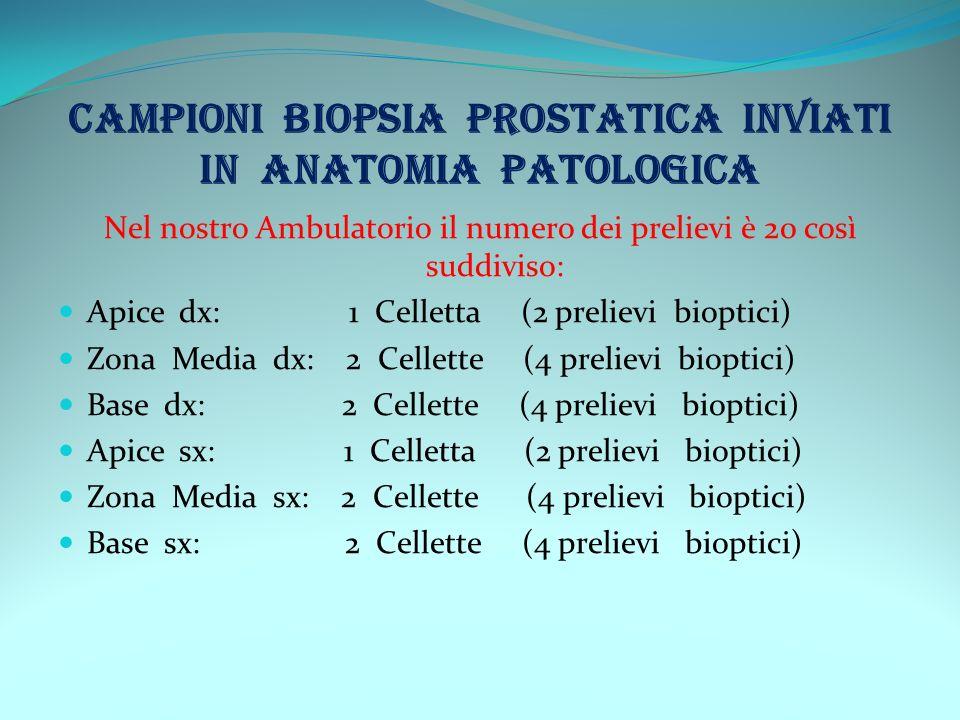 CAMPIONI BIOPSIA PROSTATICA INVIATI IN ANATOMIA PATOLOGICA