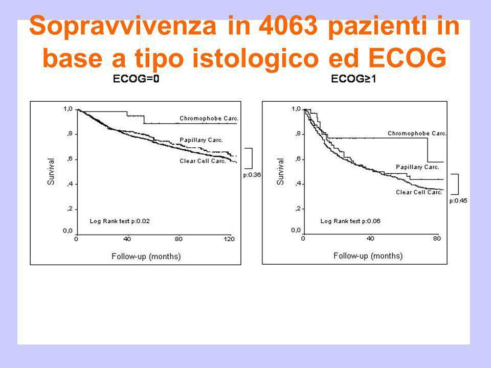 Sopravvivenza in 4063 pazienti in base a tipo istologico ed ECOG