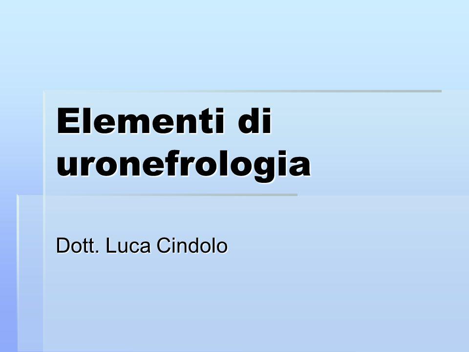 Elementi di uronefrologia