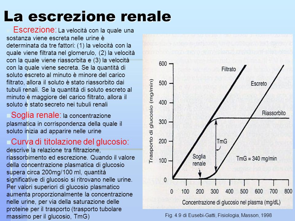 Fig. 4.9 di Eusebi-Gatti, Fisiologia, Masson, 1998