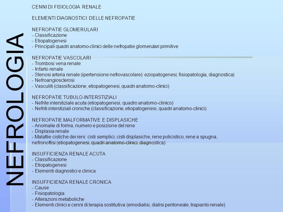 NEFROLOGIA CENNI DI FISIOLOGIA RENALE