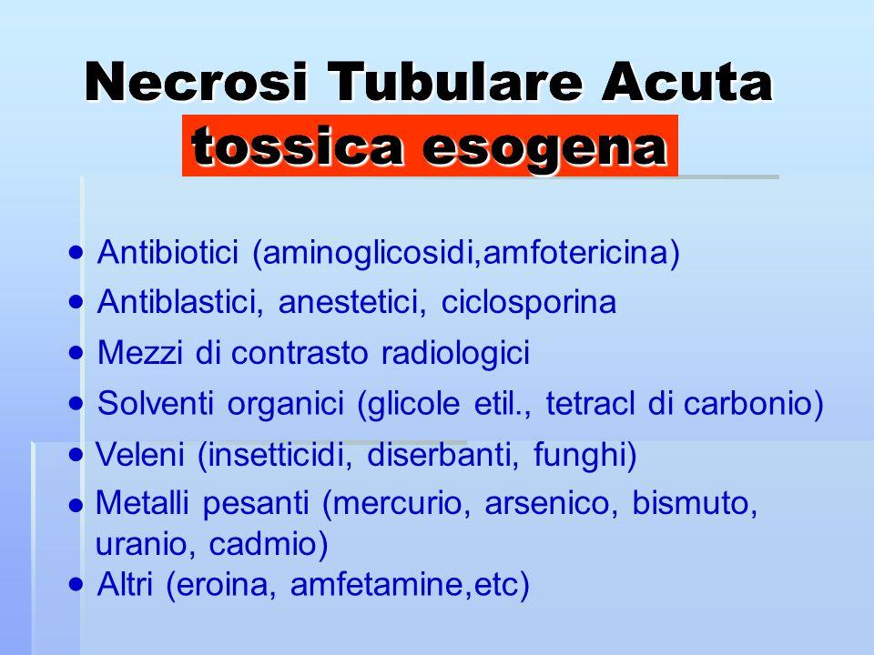 Necrosi Tubulare Acuta tossica esogena