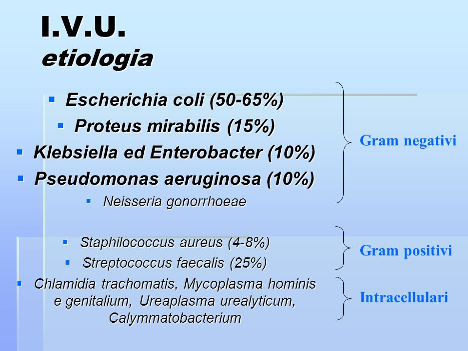 Klebsiella ed Enterobacter (10%)