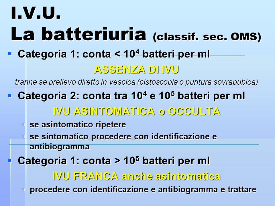 I.V.U. La batteriuria (classif. sec. OMS)