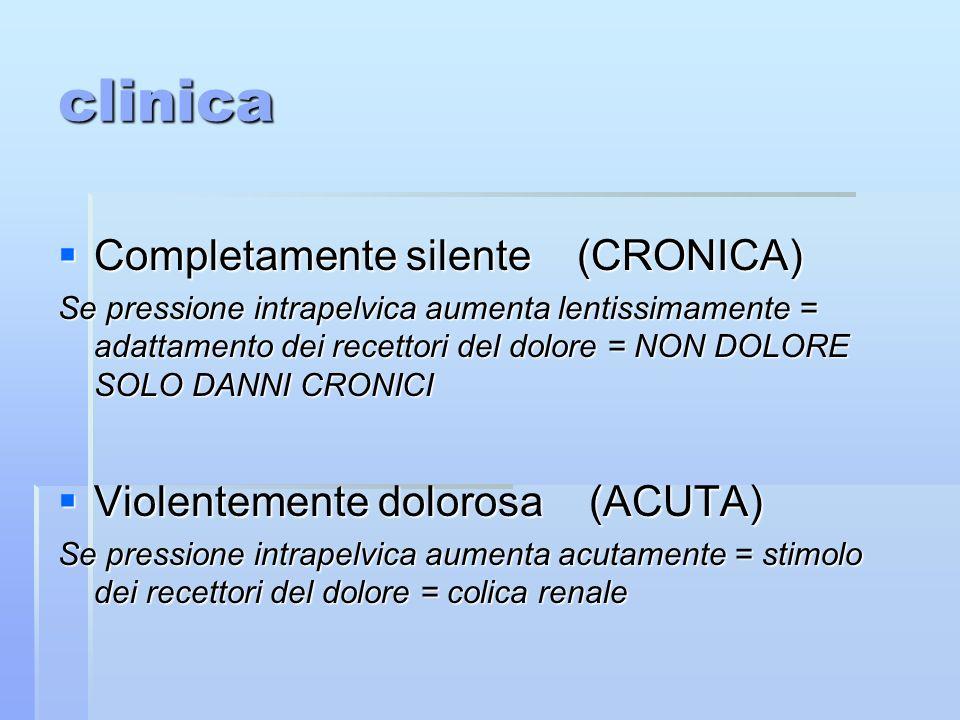 clinica Completamente silente (CRONICA) Violentemente dolorosa (ACUTA)