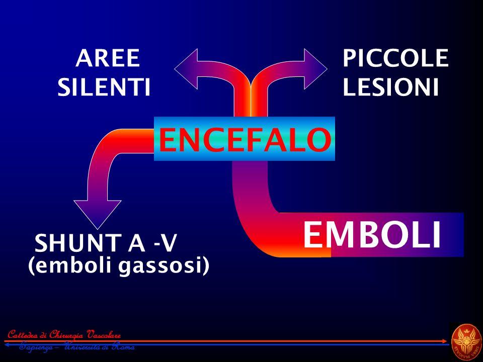 EMBOLI ENCEFALO AREE SILENTI PICCOLE LESIONI SHUNT A -V