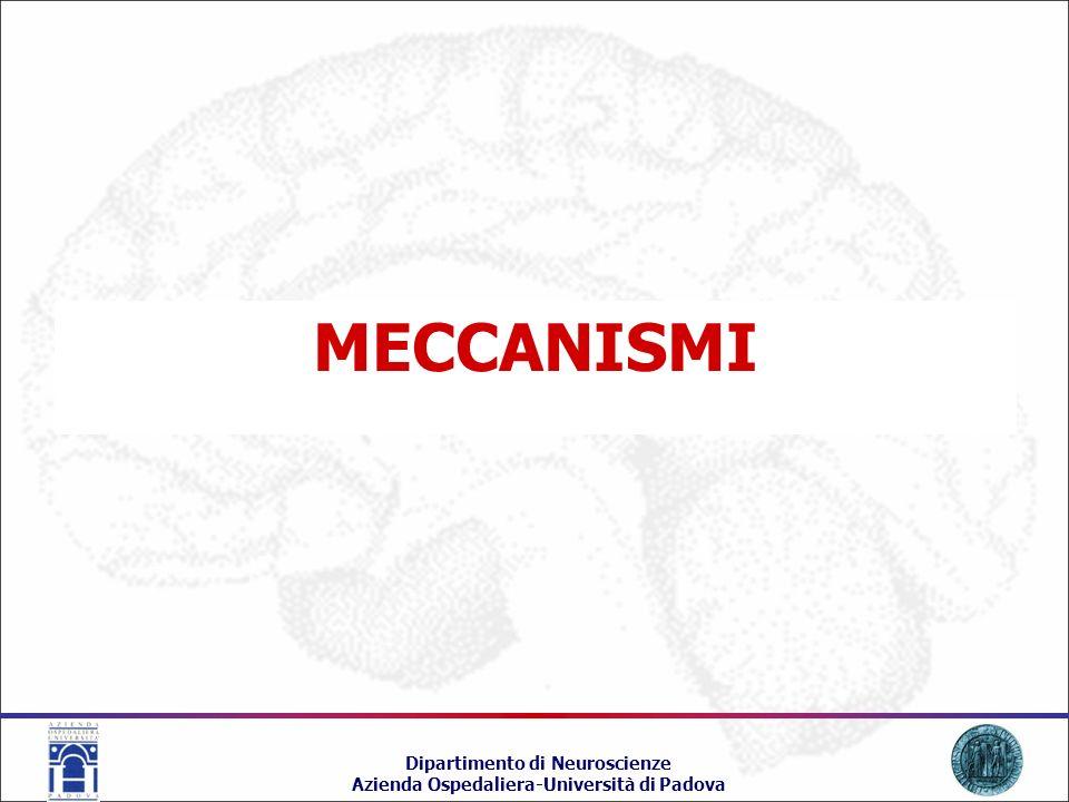MECCANISMI